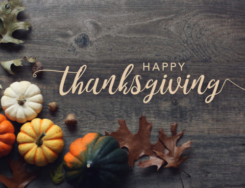 Honoring the Six Sigma Principles This Thanksgiving